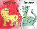 Gryfindor_vs_Slytherin.jpg